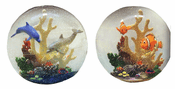 Aquarium Ball