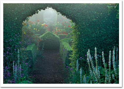 Archway in Hedge