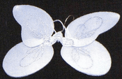 Child Fairy Wings