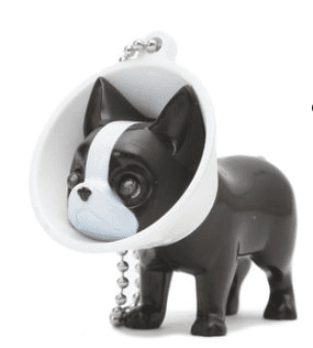 Cone of Shame LED Keychain