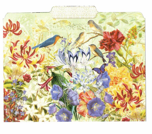 File Folder: Birds & Flowers