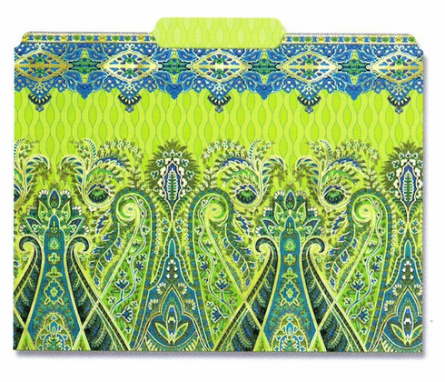 File Folder: Turquise Paisley