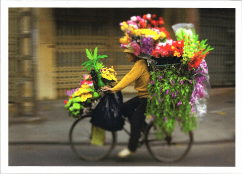 Flowers on Bike