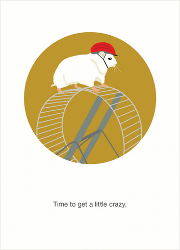 Hamster Wheel Crazy Time