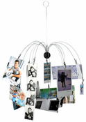 Hanging Spider Photo Display