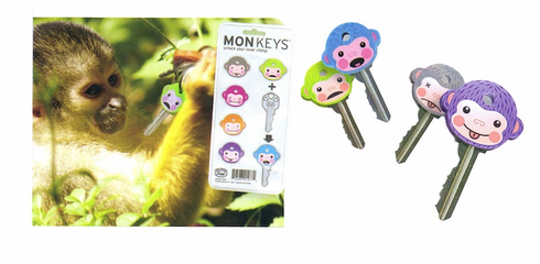 Key Set - 6 MonKEYS