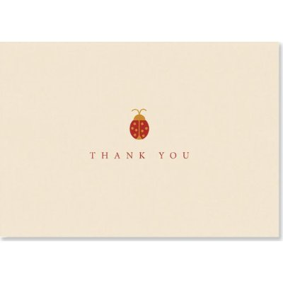 Lady Bug Thank You Notes