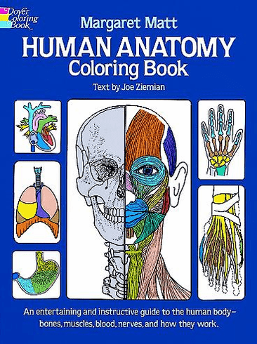 LG Coloring Book: Human Anatomy