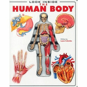 Look Inside: The Human Body