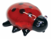Looking Glass Dotty Ladybug