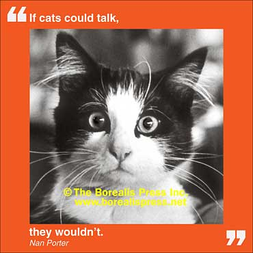 Magnet: Cats Could Talk
