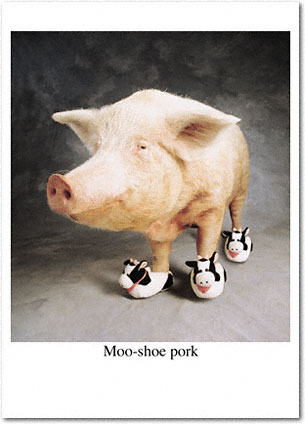 Moo-Shoe Pork