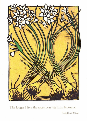 Narcissus Card