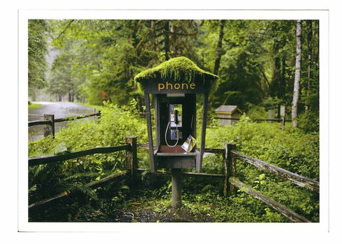 Pay phone in the forest