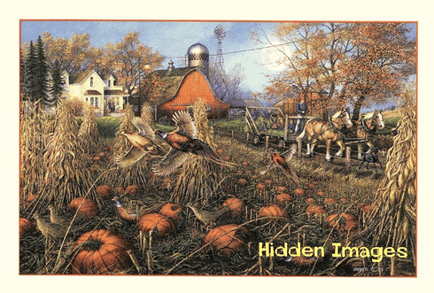 Pheasant Pumpkin Patch