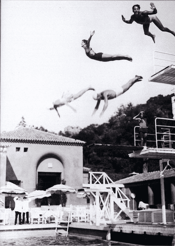 Spring Board Divers