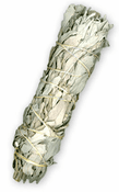White Sage Shamen Smudge Stick
