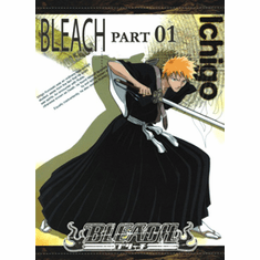 Bleach Part 1 (3 discs)