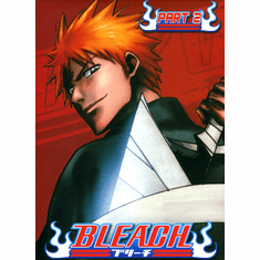Bleach Part 2 (3 discs)