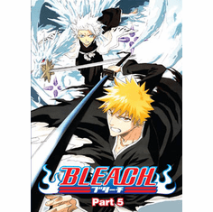 Bleach Part 5 (3 discs)