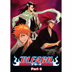 Bleach Part 6 (3 discs)