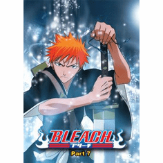Bleach Part 7 (3 discs)
