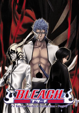 Bleach ~ Tv Series Perfect Collection - Part 6  English dubbed (AG Brand)