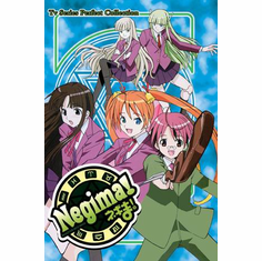 Negima! ~ Tv Series Perfect Collection English Dubbed