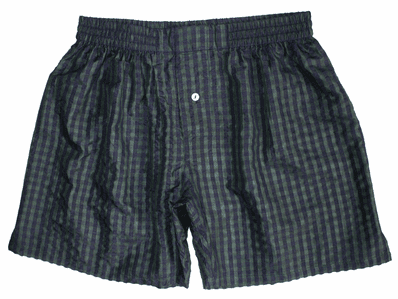Indigo Green Checks Silk Boxers