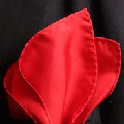 Red Silk Twill