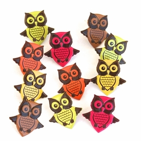 Owl Brads - Bright- Daily Deal