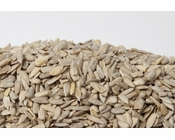 No Shell Organic Sunflower Seeds (16oz Bag)