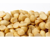 Roasted Macadamias Halves and Pieces (1 Pound Bag) - Salted