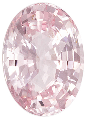 Highly Desirable No Heat Oval Shape Peach Sapphire Loose Gem, 1.48 carats, Vivid Champagne Peach Color, 8.11 x 5.78 x 3.84 mm, GIA Certified