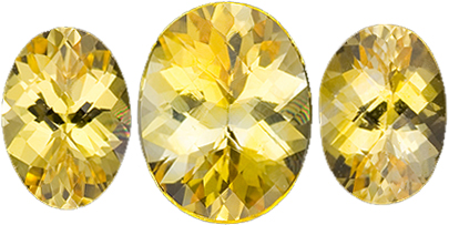Faceted 1.83 carat Yellow Sapphire 3 Gemstone Matched Set in Oval Cut 7 x 5 mm