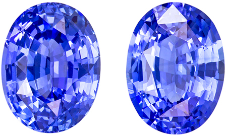 4.78 carats Blue Sapphire Matched Gemstone in Pair in Oval Cut, Vivid Cornflower Blue, 9.2 x 6.9 mm