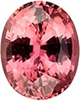 Bright & Lively Peach Sapphire Unheated Loose Gem, Oval Cut, Salmon Peach, 2.74 carats , 9.14 x 7.31 x 5.01 mm GIA Certified