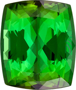 Enchanting, Lively Green Tourmaline Natural Gem, Cushion Cut, 4.13 carats