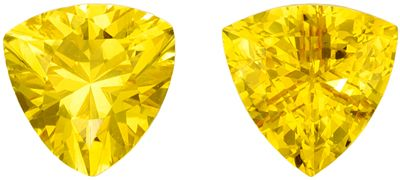 Genuine Gemstones in Pair of Intense Yellow Sapphire Trillion Cut, 1.4 carats, 5.5 mm