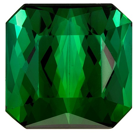 Genuine Green Tourmaline Gemstone, Emerald Cut, 8.73 carats, 11.2 x 11 mm , AfricaGems Certified - Truly Stunning