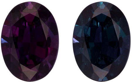 Gubelin Certified 9.5 x 6.9 mm Alexandrite Genuine Gemstone in Oval Cut, Teal Blue to Burgundy, 1.93 carats
