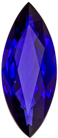 High Color Vivid Blue Loose Blue Sapphire in Marquise Cut, Vivid Rich Blue Color in 1.66 carats , 12.5 x 5.1 mm