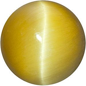 Round Cut Honey Tigers Eye in Grade AAA