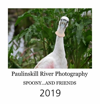 Paulinskill River Photography 2019 Desktop Spoony and Friends  Calendar