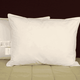 Holiday Inn Express ® Down & Feather Pillows
