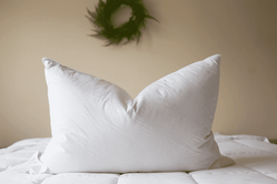 Top Selling Hotel Pillows