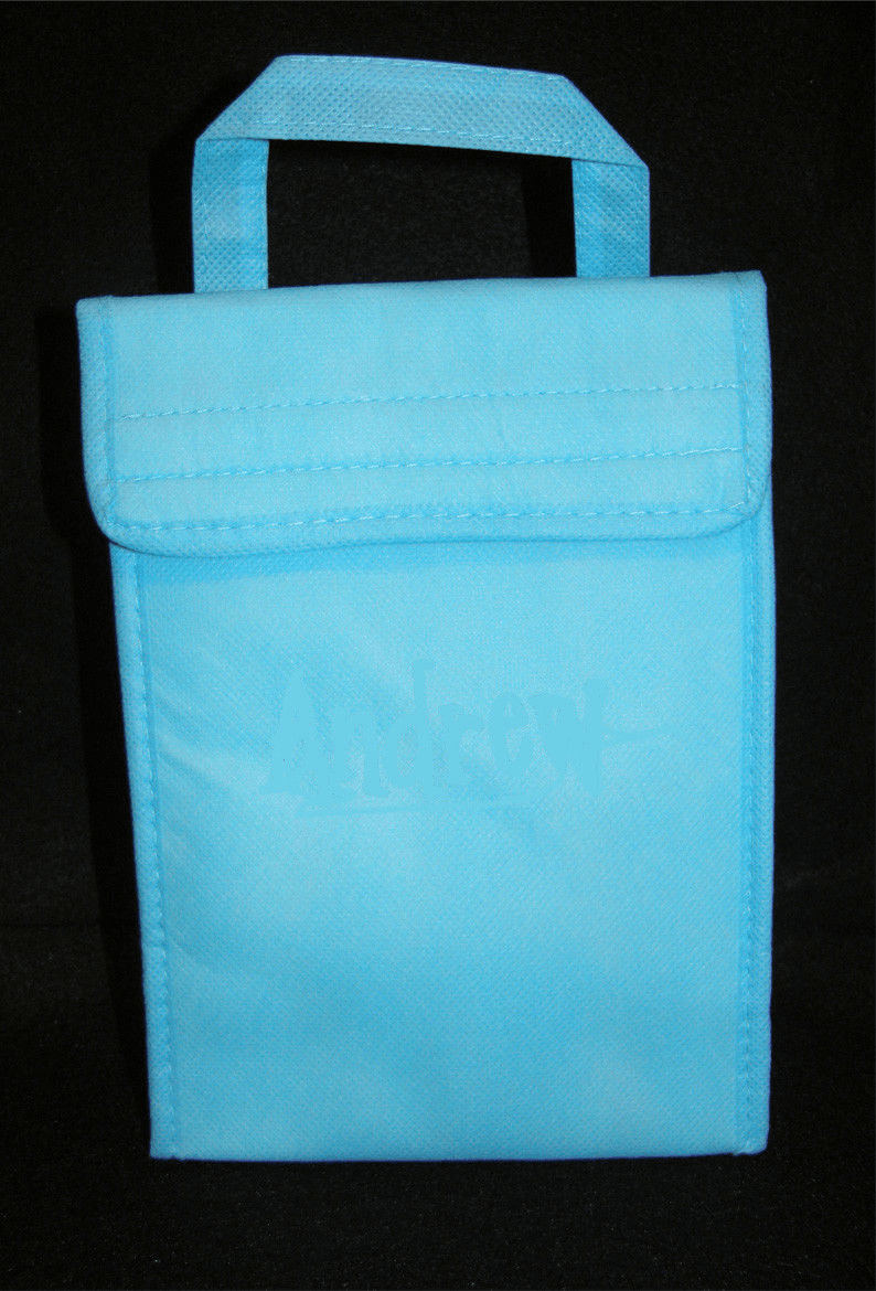 Aqua Insulated ECO Lunch Bag Tote Non Woven Polypro
