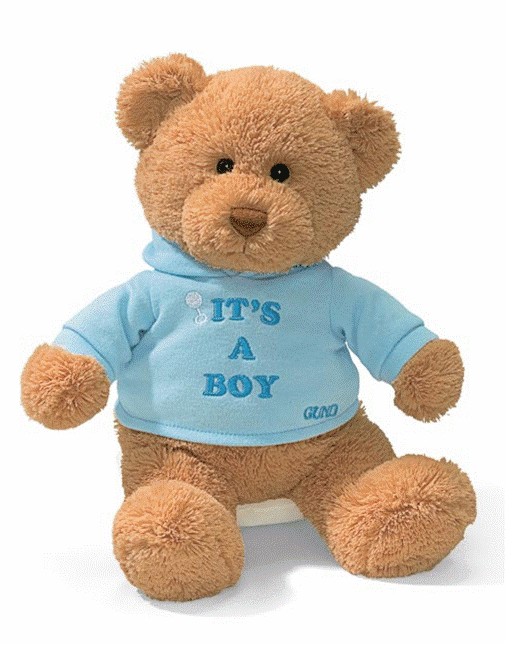 "Gund 015418 Plush ""IT""S A BOY"" Bear - PERSONALIZE ME!"