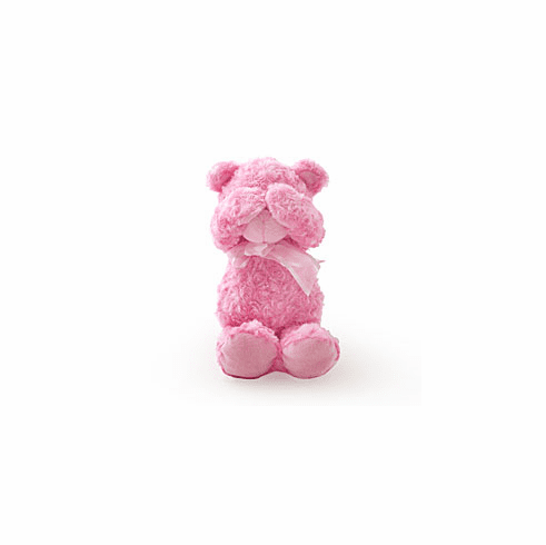 Peek-A-Boo the Pink Teddy Bear 14in Tall