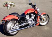 Bassani Road Rage 2 Into 1 for VROD (2002-05)